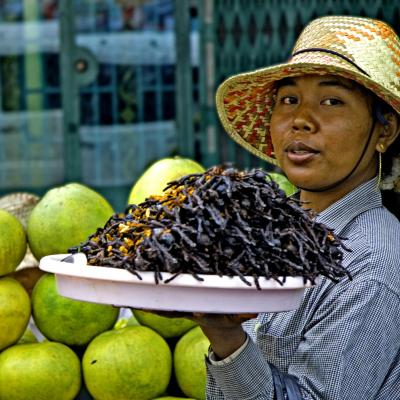 Cambogia food, insect food