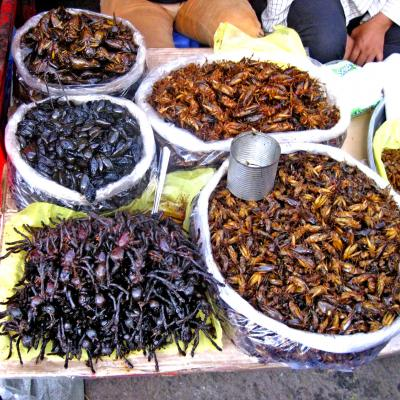 Insetti Street Food Insects Spider Cambogia